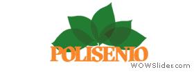 logo_polisenio